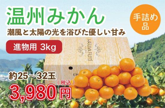 温州みかん【進物用手詰め品】3kg 約25~32玉