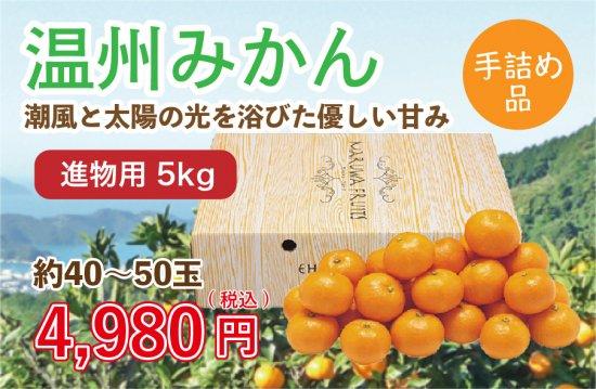 温州みかん【進物用手詰め品】5kg 約40~50玉