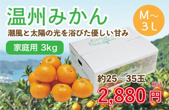 温州みかん【家庭用(M~3L)】3kg 約25~35玉