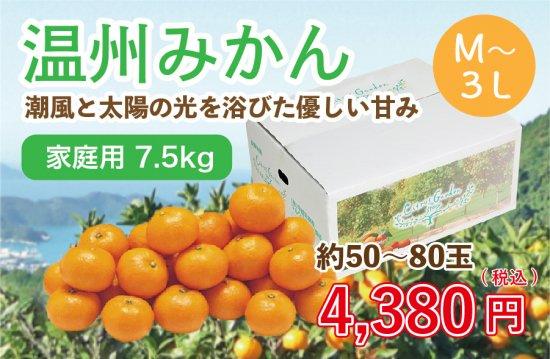 温州みかん【家庭用(M~3L)】7.5kg 約50~80玉