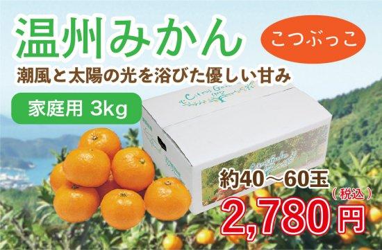 温州みかん【家庭用(こつぶっこ)】3kg 約40~60玉