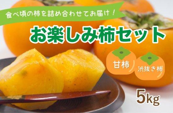 お楽しみ柿セット【甘柿・シブヌキ柿】5kg