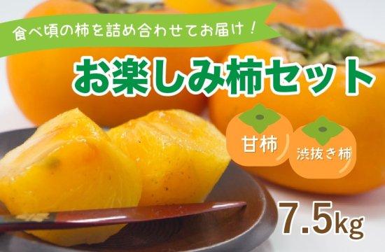 お楽しみ柿セット【甘柿・シブヌキ柿】7.5kg