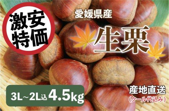 生栗(皮付き) 3L~2L込 5kg