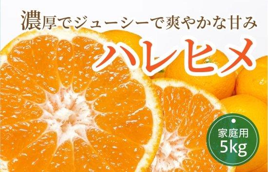 ハレヒメ 5kg 【家庭用】