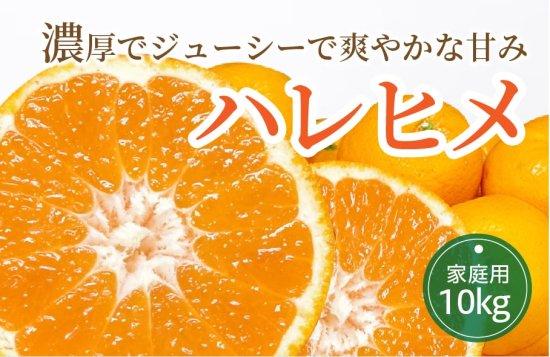 ハレヒメ 10kg 【家庭用】