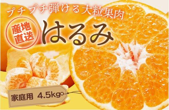 はるみ 【家庭用】5kg