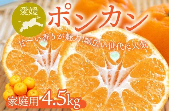 ポンカン 【家庭用】5kg