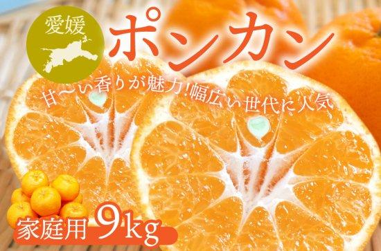 ポンカン 【家庭用】10kg