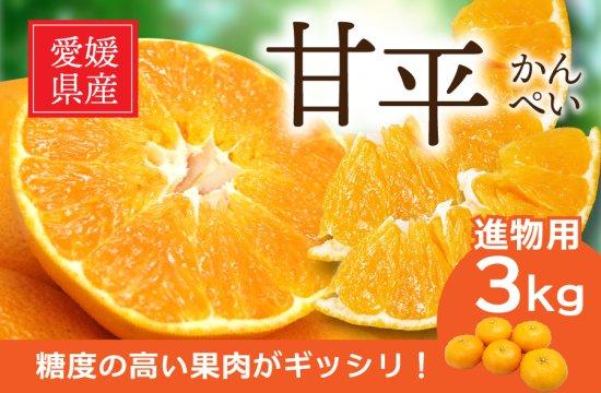 甘平 (かんぺい)【進物用・化粧箱】3kg