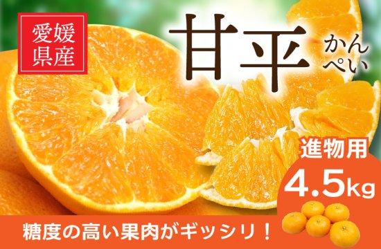 甘平 (かんぺい)【進物用】5kg