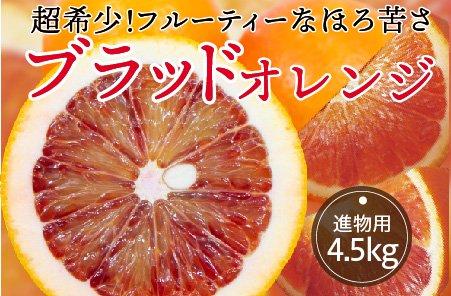 ブラッドオレンジ【進物用】5kg