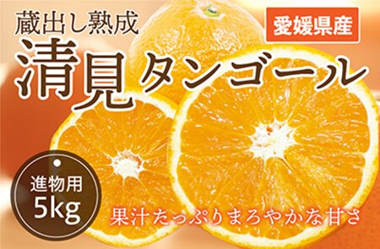 清見タンゴール【進物用】5kg