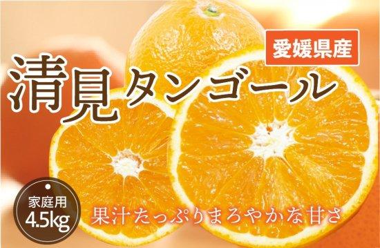 清見タンゴール【家庭用】5kg