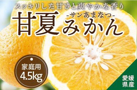 甘夏みかん(サンあまなつ)【家庭用】5kg