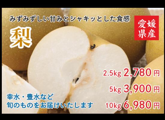 梨 2.5 � 約6〜9玉