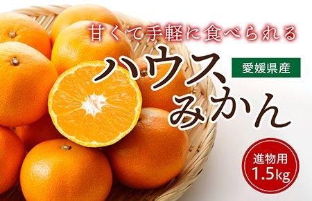 ハウスみかん【進物用】1.5� 約15〜20玉