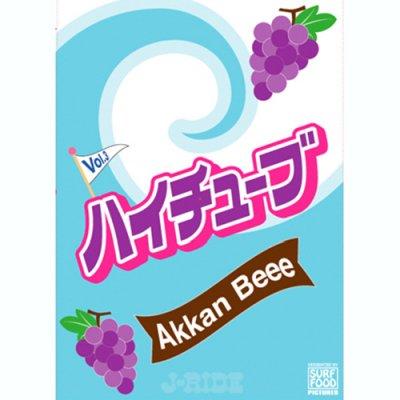 Hi Tube Akkan Beee Vol. 3 【ハイチューブ Vol. 3】/DVSV-1414