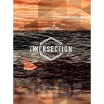 INNERSECTION VOLUME 2  [インナーセクション Vol 2 ]/DVSV-1260