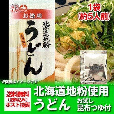 送料無料 うどん お徳用 乾麺 北海道産地粉を使用した乾麺 北海道(ほっかいどう)うどん500 g(5束)×1袋 お試し 昆布つゆ 付 価格 500 円