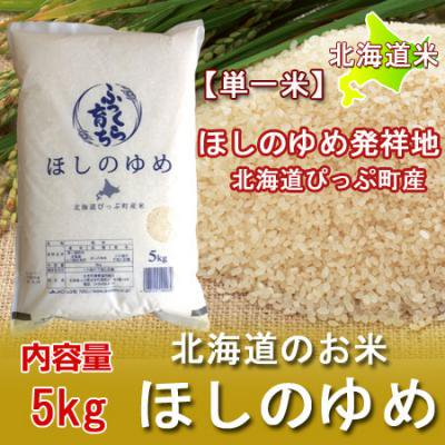 「北海道 ほしのゆめ 米」 29年産 北海道産米 比布産米 ふっくら育ち ほしのゆめ 5kg ネット価格 1980 円