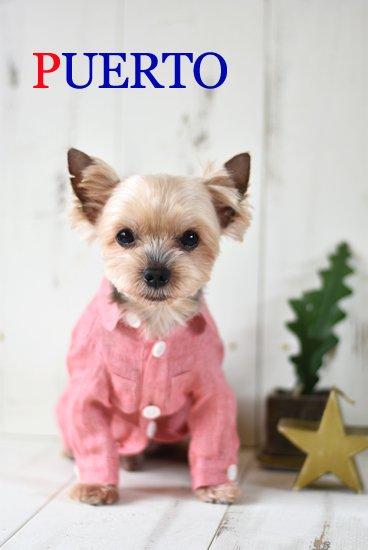 麻ピンク長袖シャツ