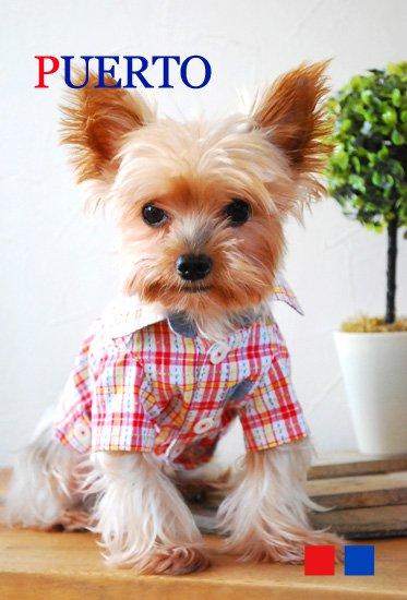 半袖ラインシャツ(2色)