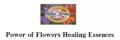 ●パワーオブフラワーヒーリングエッセンス 32本セット