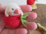 フェルトの苺と白文鳥*BINS