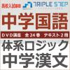体系ロジック中学漢文DVD講座〜教科書基本・応用レベルから高校入試レベルまで DVD全24巻セット