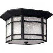 【HINKLEY】アウトドア・シーリングライト「Cherry Creek」2灯(W305×H184mm)