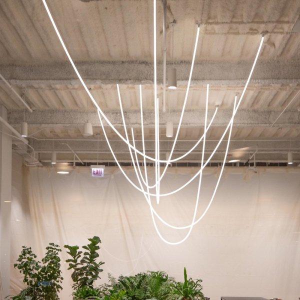 【LUKE LAMP】TracerLoop(Direct-To-Canopy)