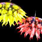 【LA LUCE】【特別照明】カラーシャンデリア 31灯(W1100×H500mm)