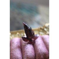 ブラジル産ルベライトトルマリン(bird)