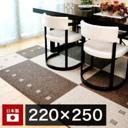 ガナッシュ アイボリー 撥水加工 カーペット ダイニング 220×250cm 日本製 絨毯 ラグ マット