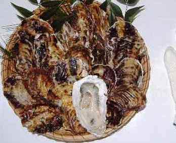 松島産直かき 加熱用殻付活かき20個、かきナイフセット付き