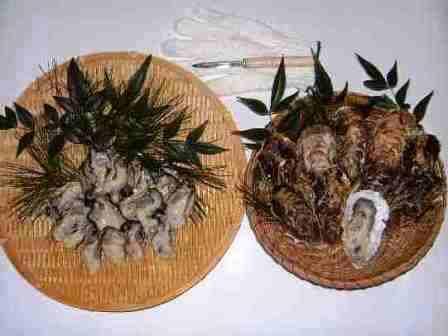 松島産直かき 食べきりセット (生食用むき身300g + 加熱用殻付10個)
