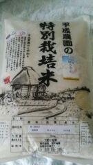平成農園特別栽培米 風さやか 5kg