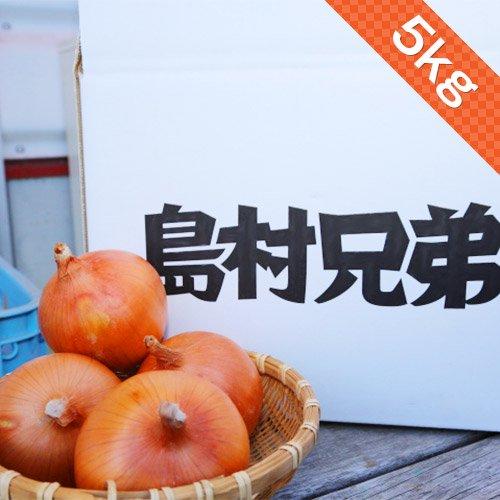 たまねぎ 5kg 淡路島産 【訳あり】【サイズ不揃い(2L〜S)】