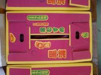 鳴門金時 里むすめ 徳島県鳴門産 5kg Lサイズ(18本程度)