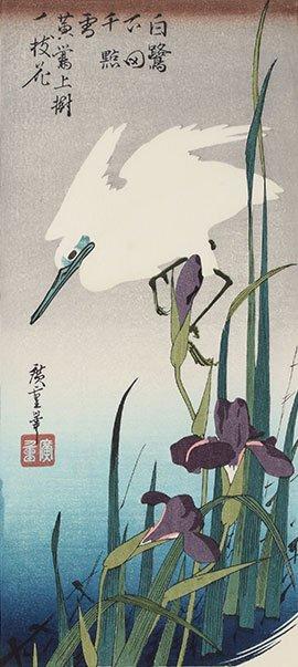 花菖蒲に白鷺