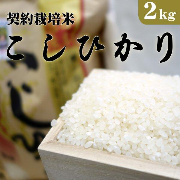 大田原市湯津上産 契約栽培米コシヒカリ 2kg_画像