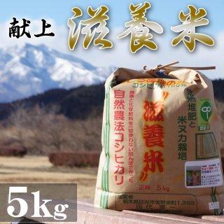 日光産 滋養米 自然農法コシヒカリ 5Kg_画像