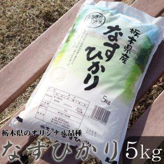 栃木県のオリジナル品種 なすひかり 5kg_画像
