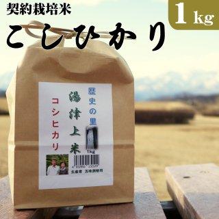 大田原市湯津上産 契約栽培米コシヒカリ 1kg_画像