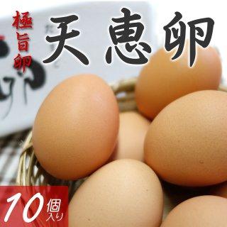 極旨卵 天恵卵 10個入り_画像