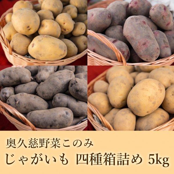 奥久慈野菜このみ じゃがいも詰合せ 5kg...