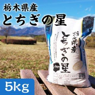 栃木県産とちぎの星 5kg_画像