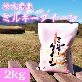 栃木県産 ミルキークイーン 2kg_画像