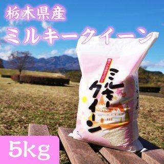 栃木県産 ミルキークイーン 5kg_画像